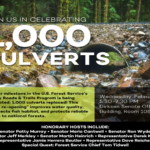Congress Celebrates 1,000th Culvert Replacement with Legacy Roads Funds