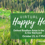 Virtual Happy Hour: Defend Roadless Protection Areas in the Tongass & Our Backyard