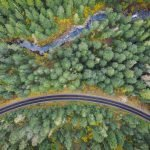 Bipartisan Legacy Roads and Trails Bill Introduced to Improve Forest Roads and Protect Waterways