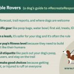 Be a Responsible Rover