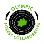 We're hiring! Olympic Forest Collaborative Coordinator