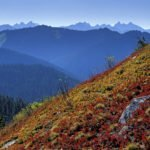 Bill to Open Wilderness Act to Mechanized Use Passes House Committee