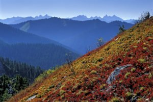 Alpine Peaks in Henry M Jackson Wilderness, by Paul Zaretsky