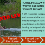 Congress, President Allow for Controversial Killing of Wolves and Bears in National Wildlife Refuges