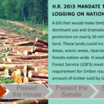 TAKE ACTION: Protect our National Forests from Mandated Logging! NO to H.R. 2613
