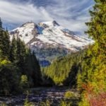 WA Wild Brings Together 25 Groups in Support of Baker Lake Road to Trail Project