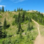Forest Service Releases Improved Roads Decision on Greenwater Watershed