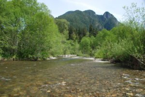 Pratt River, Photo Courtesy of Thomas O'Keefe