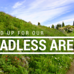 COMPLETED ACTION: Stand up for our Roadless Areas!