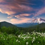Washington Wild Coordinates Letter to Protect Mount Rainier and Olympic National Parks from Noise Pollution