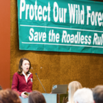 Seattle Public Meeting Focuses on Retaining Protections for Roadless Forests