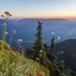Organizations Oppose Proposed Logging in Canadian Headwaters of Skagit River