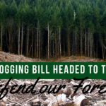 Extreme Lawless Logging Bill Passes House