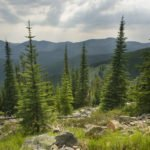 Spokesman Review Features Inadequate Wilderness and River Protections in Colville National Forest Plan