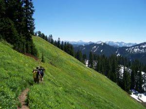 Wild Sky Wilderness. Photo Courtesy of WA Wild.
